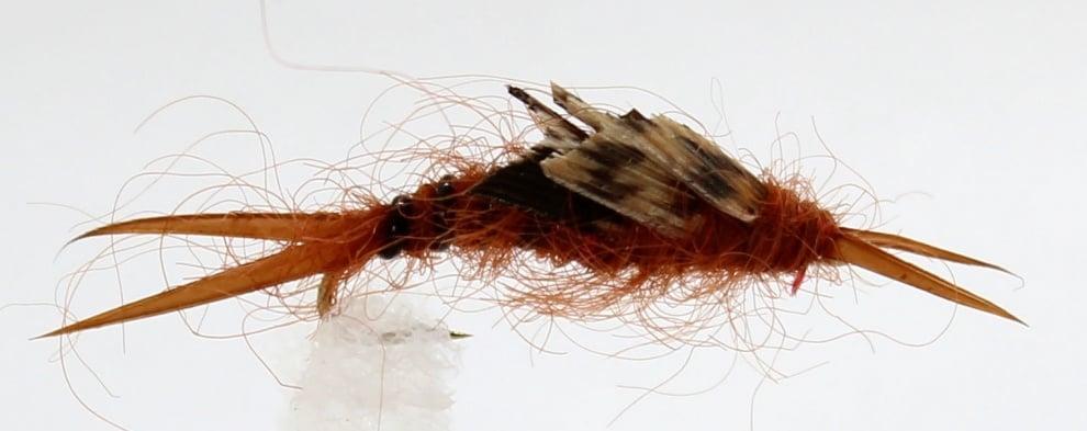 Dragon Мухи английски нимфи Wtd Brown Stone Fly